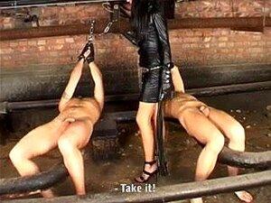 Die unterwürfige Dee Williams mit ihrem verrückten Arsch wird von der Herrin Cherry Torn gefoltert